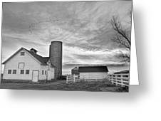 Early Morning On The Farm Bw Greeting Card