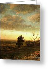 Early Morning Sunrise On The Praires Greeting Card