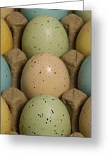 Easter Eggs Carton 1 A Greeting Card