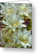 Easter Lily Cactus Bouquet Hdr Greeting Card