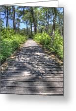 Easy Path Greeting Card