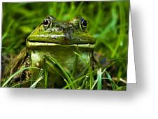 Easy To Be Green Greeting Card
