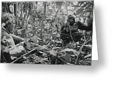 Ebobo, A Male Gorilla, Waits Greeting Card