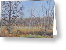 Edge Of The Marsh Greeting Card