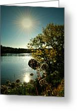 Eds River Valley. Greeting Card