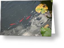 Eerie Reflection Greeting Card