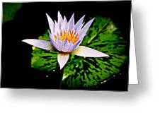 Egg Lily Greeting Card
