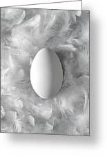 Egg On Feathers, Conceptual Image Greeting Card