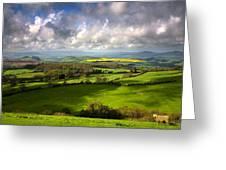 Eggardon Sheep Greeting Card by Kris Dutson