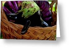 Eggplants From Sicily Greeting Card