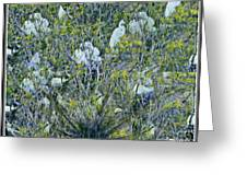 Egrets At Roost Greeting Card