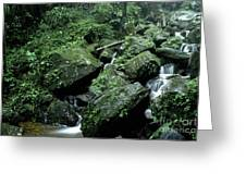 El Yunque National Forest Rocks And Waterfall Greeting Card by Thomas R Fletcher
