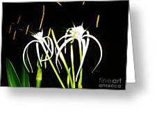 Elaines Flowers Greeting Card