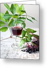 Elderberries 05 Greeting Card