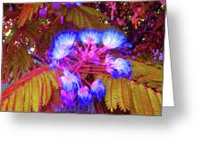 Electric Mimosa Greeting Card by Juliana  Blessington