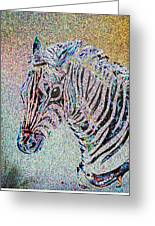 Electric Zebra Greeting Card
