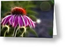 Electrified Coneflower Greeting Card