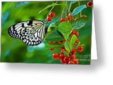 Elegant Rice Paper Butterfly On Berry Tree Greeting Card