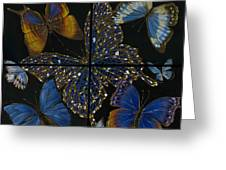 Elena Yakubovich Butterfly 2x2 Greeting Card