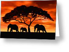 Elephant Sun Set Greeting Card