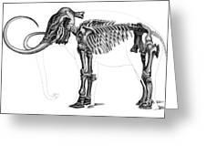 Elephas, Extant Cenozoic Mammal Greeting Card