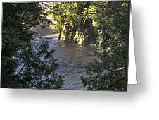 Elora Gorge Conservation Area Greeting Card