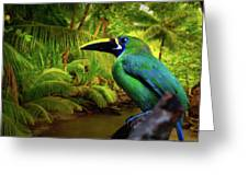 Emerald And Blue Toucan  Greeting Card