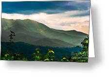 Emerald And Gold Greeting Card