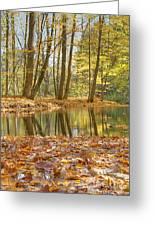 Emerald Creek 2 Greeting Card
