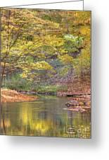 Emerald Creek Greeting Card