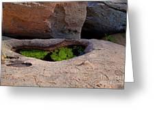 Emerald Pool Greeting Card