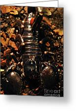 Emperor Scorpion 1.0 Greeting Card