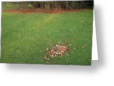 Empty Lawn With A Little Heap Of Leaves Scraped Together Greeting Card