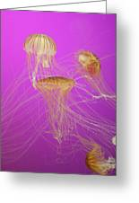 Enchanted Jellyfish 1 Greeting Card
