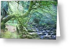 Enchanted Leprechaun Forest Greeting Card