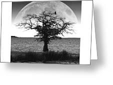 Enchanted Moon Greeting Card