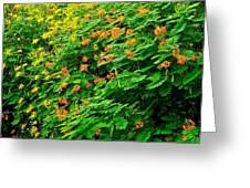 Encore Plus Des Fleurs  Greeting Card