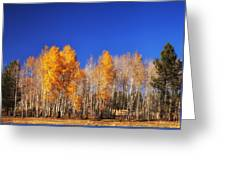 End Of Autumn Greeting Card