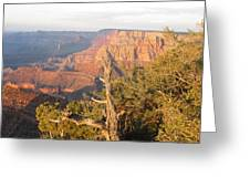 End Of Grand Canyon Day Greeting Card