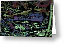 Endangered Greeting Card