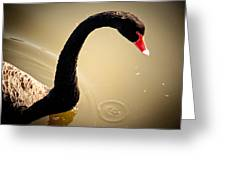 England Castle Swan Greeting Card