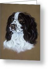English Cocker Spaniel Greeting Card by Patricia Ivy