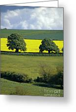 The Cotswolds 2 Greeting Card