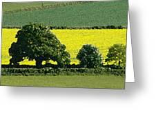 English Field Of Yellow 2 Greeting Card