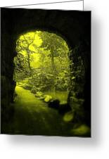 Entrance To Fairyland Greeting Card by Maria Scarfone