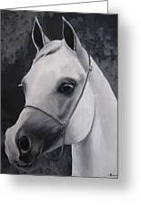 Equestrian Silver Greeting Card