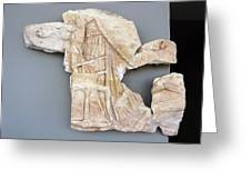 Erechtheus On Chariot Greeting Card