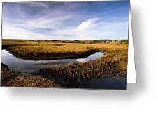 Estuary At Limantour Beach, Usa Greeting Card