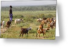 Ethiopia-south Tribal Goat Herder Greeting Card