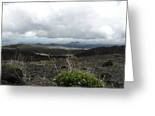 Etna's Landscape Greeting Card